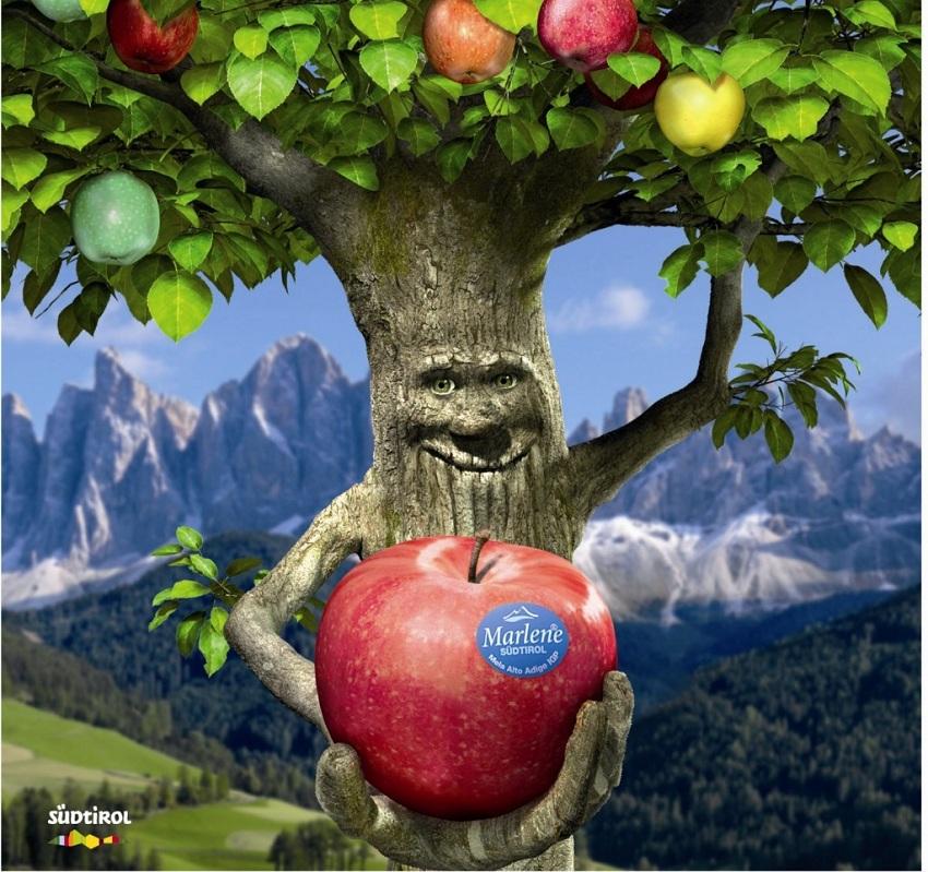 Manzanas Marlene, siete sabores de placer