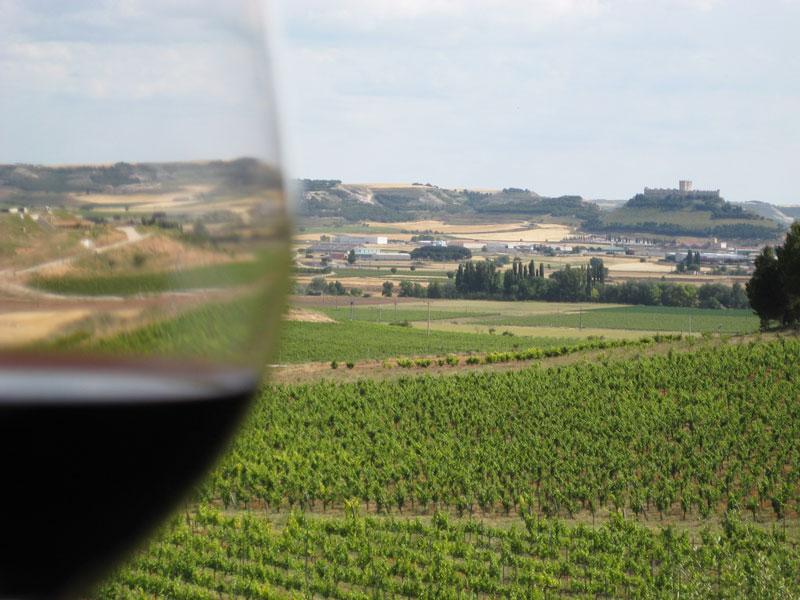 Ribera del Duero. Privilegiada tierra de vinos