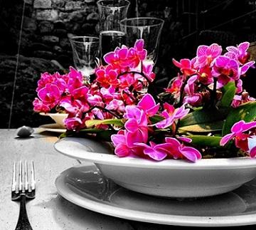 Girona huele y sabe a flores