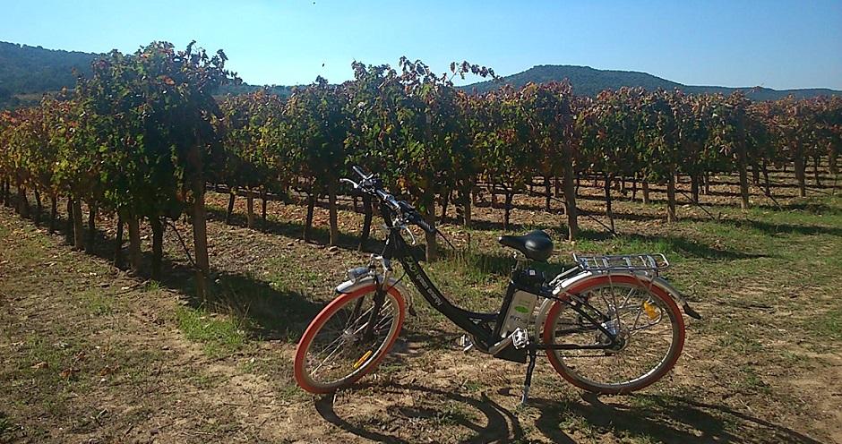 Bici y picnic en Finca Villacreces