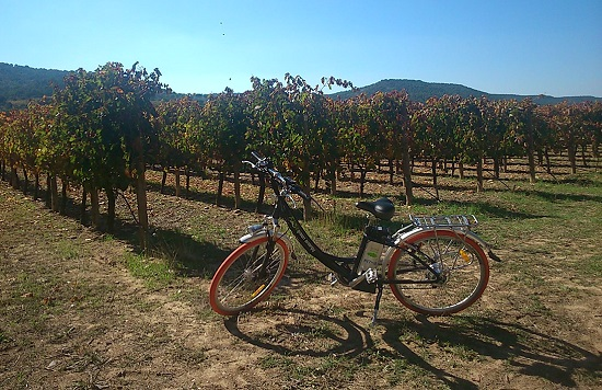 Bici y pícnic en Finca Villacreces