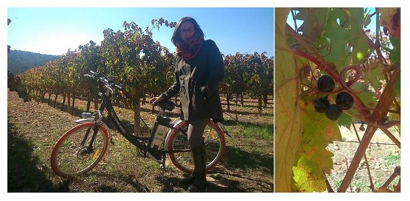 En bici por el viñedo de Finca Villacreces