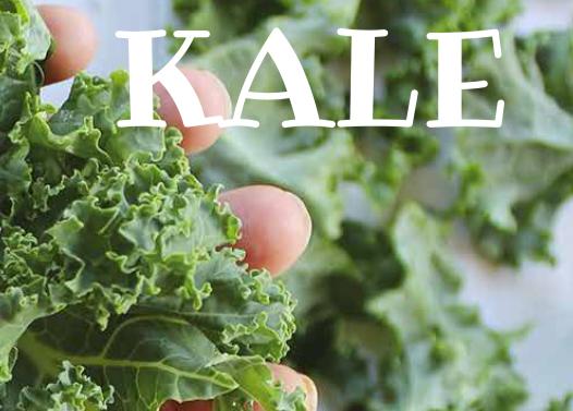 ¿Conoces el kale?